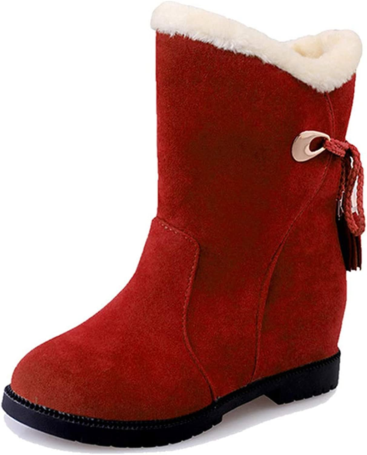 Fay Waters Women's Warm Fringe Fur Short Boots Plush Suede Platform Slip On Round Toe Snow Booties