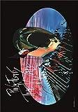 Heart Rock Flagge Original Pink Floyd Hammers, Stoff, mehrfarbig, 110 x 75 x 0,1 cm