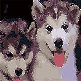 JiaHM Dog Paint by Number 40x50cm-Contiene un Marco Integrado Pintura Cuadros