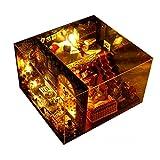 DIY Puppenhaus Miniatur mit Möbeln Kreativ Puppenhaus mit LED Licht 22cmx21cmx17cm...