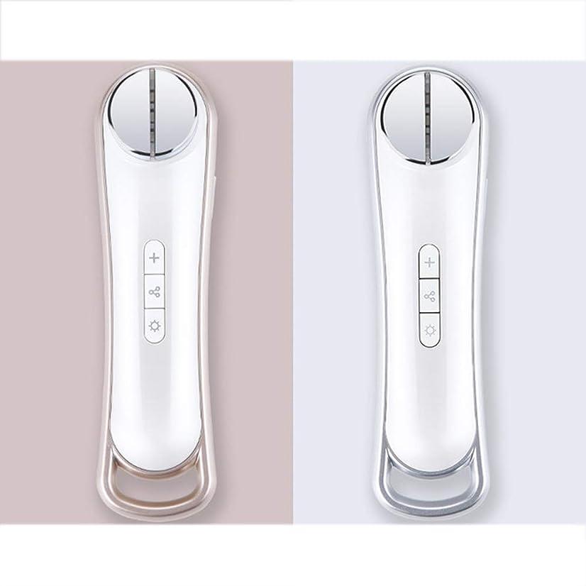 コード健全スリップEms美容器具顔振動マッサージャーRf顔の光子肌の若返りリフティング引き締めスキンケア機器,銀