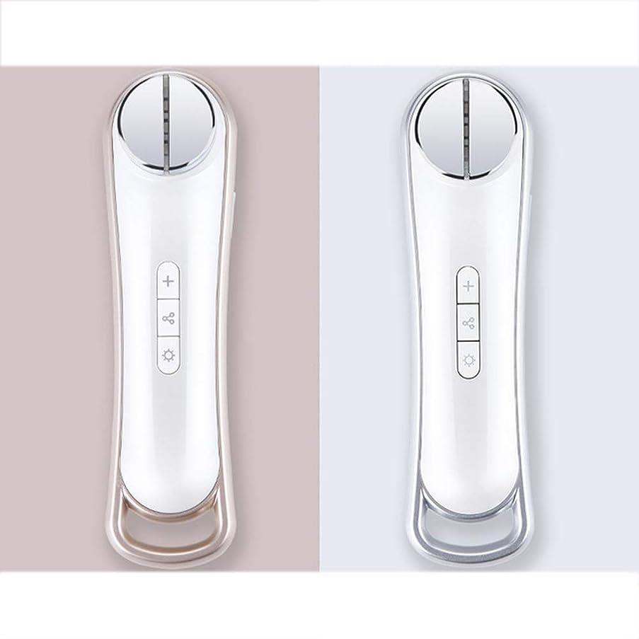 接地風脈拍Ems美容器具顔振動マッサージャーRf顔の光子肌の若返りリフティング引き締めスキンケア機器,銀
