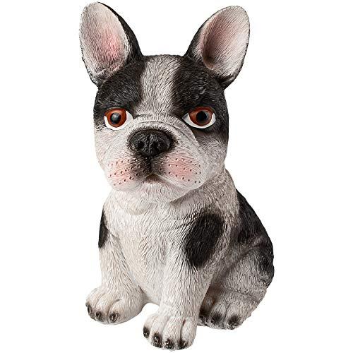 alles-meine.de GmbH große Spardose - Motivwahl - Hund - Bulldogge - 16 cm - mit Verschluss - stabile Sparbüchse - aus Kunstharz / Polystone - Sparschwein - für Kinder & Erwachsen..