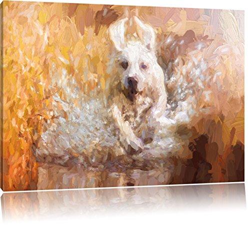 Pixxprint Labrador-Welpe Wasser als Leinwandbild/Größe: 60x40 cm/Wandbild/Kunstdruck/fertig bespannt
