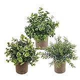 3 plantas artificiales mini en maceta, plantas artificiales en maceta, pequeñas para hogar, escritorio, cocina, baño, jardín, decoración