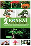 Bonsai for Beginners: The Most Comprehensive Guide to Bonsai Tree Care. Soil Selection, Growth, and Pruning. Contains Exclusive Secrets and Tricks (1)