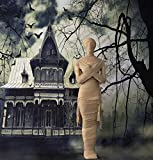 Haunted Hill Farm HHMUM-1F Life-Size Standing Wrapped Mummy Covered Indoor/Outdoor Halloween Decoration, Color 6