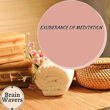 Exuberance Of Meditation
