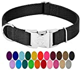 Collars For Dogs - Best Reviews Guide