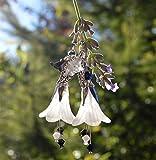 Boucles d'oreilles noir et blanc avec fleurs pendantes et cr