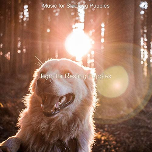Music for Sleeping Puppies