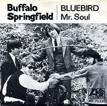 Buffalo Sprinfield Neil Young rare Swedish 45 rpm vinyl singe Bluebird Mr. Soul different mix