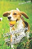 L'EDUCATION DU BEAGLE: Toutes les astuces pour un Beagle bien éduqué
