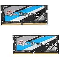 G.SKILL Ripjaws Series 32GB Laptop Memory