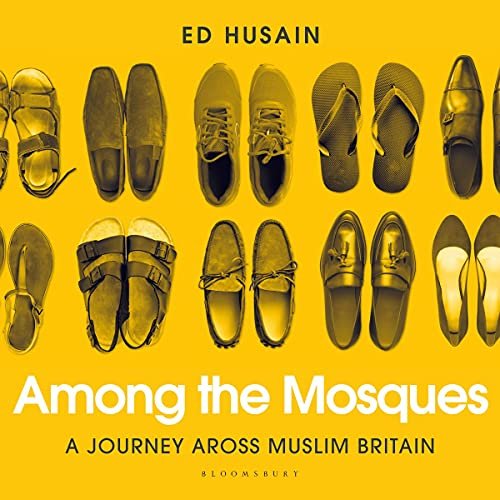 Among the Mosques cover art