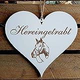 Schild Herz Pferd Spruch Hereingetrabt Holzschild