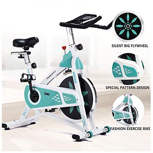 Ultra Silencioso Bicicleta De Spinning Cubierta, 200 Kg De Levantamiento De Peso Ejercicio En Bicicleta, Aparatos De Ejercicios Cubierta, Usado For Ejercicios En El Hogar Y El Ejercicio Aeróbico