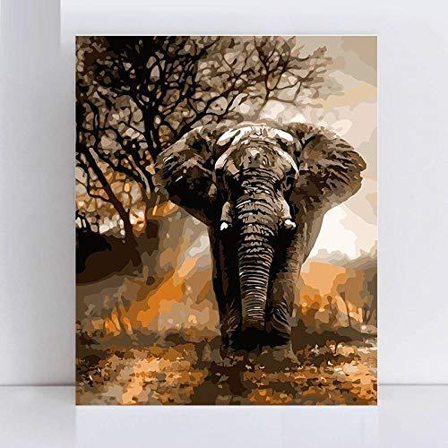Xhzzdhbc olieverfschilderij schilderen op cijfers op nummer schilderen kunst schilderen op cijfers lopen In de Wut een olifant schilderen op nummer op canvas Frameloos