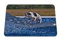 26cmx21cm マウスパッド (犬のプールの状況エクストリームマットレス) パターンカスタムの マウスパッド