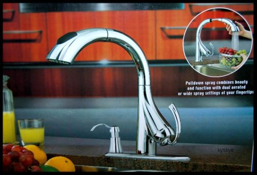 Online Water Ridge Pull Down Kitchen Faucet 205674 Potterybroker