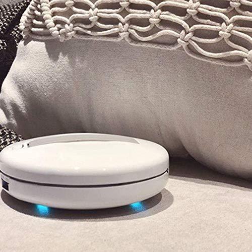 Aspirapolvere Robot Cleansebot Antiacari Mini Portatile,GoZheec Aspirapolvere per Materasso con Lampada UV Antibatterica, Macchina senza fili di sterilizzazione, Adatto a Pulizia Quotidiane.