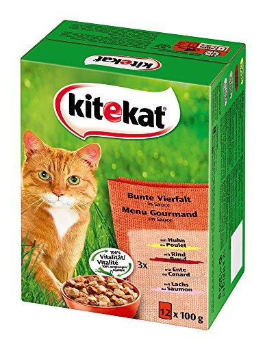 Kitekat Katzenfutter Bunte Vierfalt in Sauce, 12 Stück, 1,2 kg