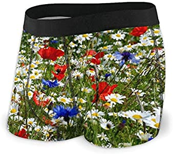 Yuanmeiju Mens Boxer Shorts Fitted Bragas Summer Daisies Cornflowers Trunks Quick Dry Ropa Interior