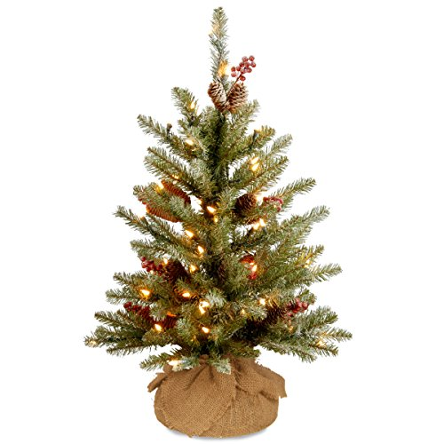 National Tree Company Pre-lit Artificial Mini Christmas Tree | Includes Small LED Lights, Red Berries, Pine Cones and Cloth Bag Base | Dunhill Fir - 3 ft