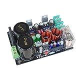 HYY-YY LM1875 udio mplifier Board estéreo mplificador Gaincard GC versión LM1875 baja distorsión MP DIY kits