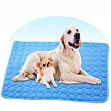 Best Cooling Pad For Dogs - Wondery Dog Cooling Mat, Pressure Activated Comfort Cooling Review