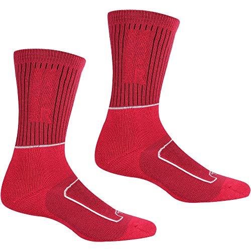 Regatta Samaris Damen Socken für 2 Jahreszeiten, Damen, Socken, RWH046, CheryPink/Weiß, 39-41