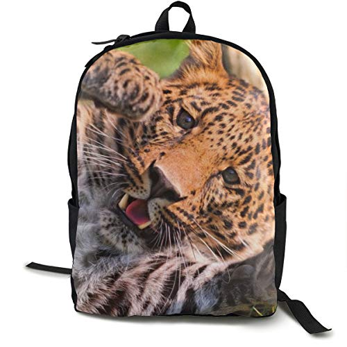 Zaini College Scuola Borsa Portatile Zaino Bookbag Viaggio Escursioni Campeggio Daypack, Leopard Paw Big Cat Predator