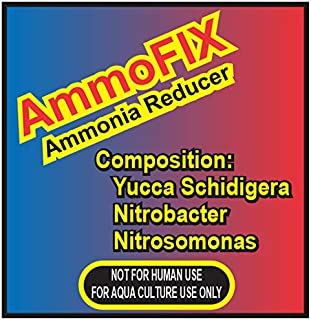 FeedWale AmmoFIX Ammonia Reducer 1Kg – Removes Gas from BioFloc Tanks & Fish Ponds Maintains Water Quality in Aquaculture