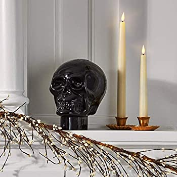 Glass Skull Home Decor - Halloween Decoration 7 Inch Statue Opaque Black Durable Heavy Glass Realistic Replica Human Skeleton Head - for Gothic Home Decor or Creepy Shelf and Table Display