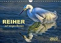 Reiher - auf langen Beinen (Wandkalender 2022 DIN A4 quer): Reiher - auf langen Beinen stelzend auf Nahrungssuche. (Monatskalender, 14 Seiten )