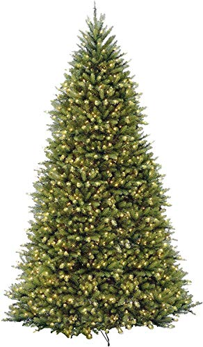 National Tree Company Pre-lit Artificial Christmas Tree | Includes Pre-strung White Lights| Dunhill Fir - 12 ft