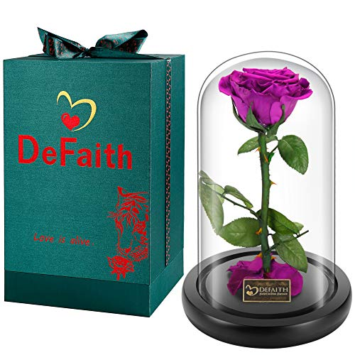 DEFAITH Real Rose 9'' Beauty and The...
