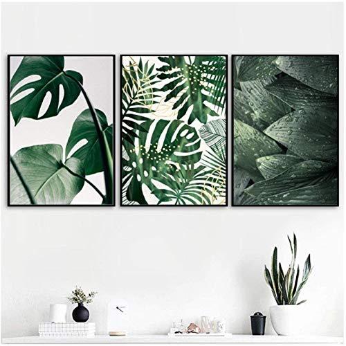 xwwnzdq Frische Grüne Große Blätter Wand Kunstdruck Leinwand Malerei Nordic Poster Und Drucke Tropische Pflanzen Wandbilder Für Wohnzimmer 50x70 cm x 3 Kein Rahmen