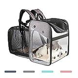 Porta zaino per cani Zaino per gatti portatile, espandibile Zaino per cani con apertura a rete Acrilico visibile, allungabile Indietro Più spazio per il trasporto di cuccioli Coniglio Fino a 10 kg