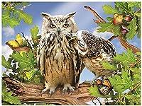 Q&Kジグソーパズル大人のための500ピース木製フクロウ盗む親戚アートパズルゲームおもちゃ挑戦的なDIY組み立てクラシックアート愛ユニークなギフト