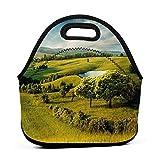 Bolsa de almuerzo reutilizable de tamaño grande, verde, paisaje panorámico, paisaje montañoso con lago y azul cielo nublado, campo, verde azul, bolsa de almuerzo para niños