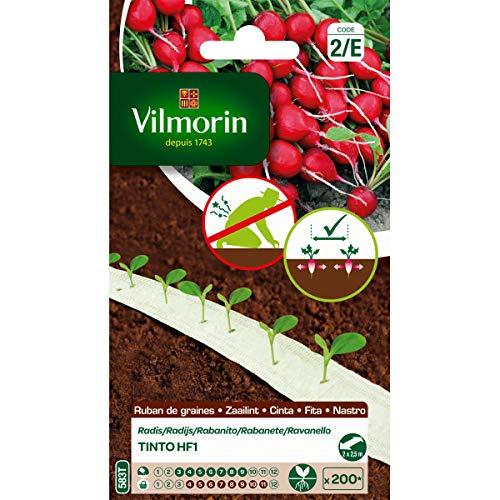 Vilmorin Ruban de graines Radis Tinto HF1 5m