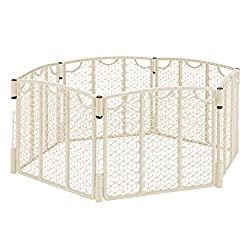 Evenflo Indoor & Outdoor Baby Gate & Playpen