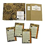 Beeren-Naschgarten (Bio) - Samen-Geschenkset mit 4 himmlischen, aromatischen Beerensorten für die Aussaat