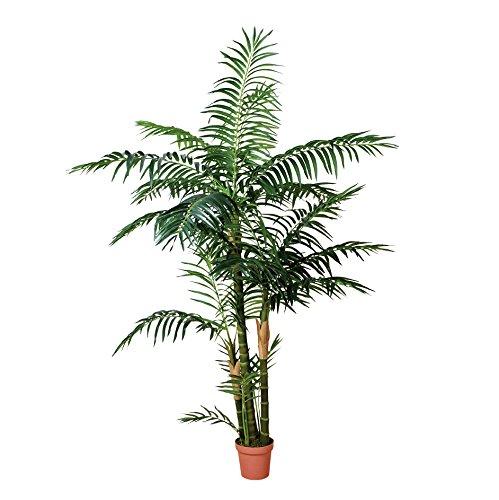 Catral Allemagne Décoration, Plante Palmera 120 cm, Vert, 130 x 20 x 20 cm, 74010012