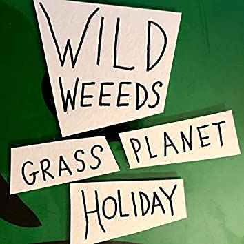 Grass Planet Holiday