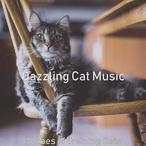 Dazzling Cat Music