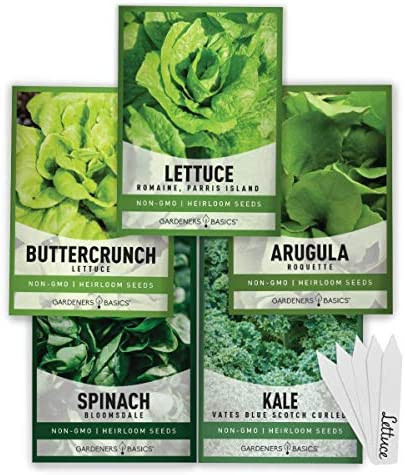 Lettuce and Greens Heirloom Vegetable Seed Non GMO Seeds for Planting Indoors and Outdoor 5 product image