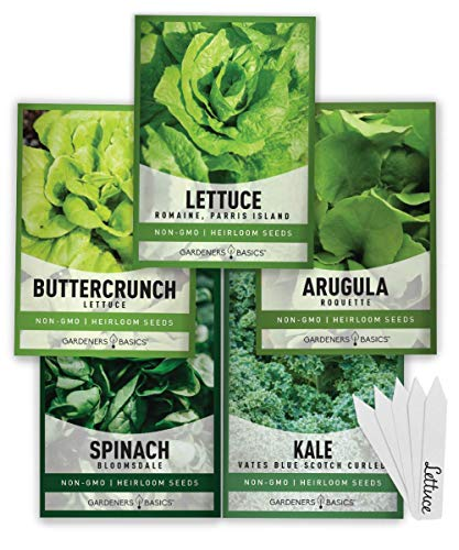 Lettuce and Greens Heirloom Vegetable Seed Non-GMO Seeds for Planting Indoors and Outdoor 5 Packs - Lettuce Buttercrunch, Romaine, Arugula, Kale and Spinach by Gardeners Basics