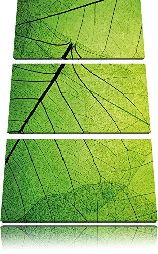 Belle Feuilles Vert Tendre Photo sur Toile |Taille: 3 Parties (120x80) cm| Peinture Murale | Art Print | prêt Couvert
